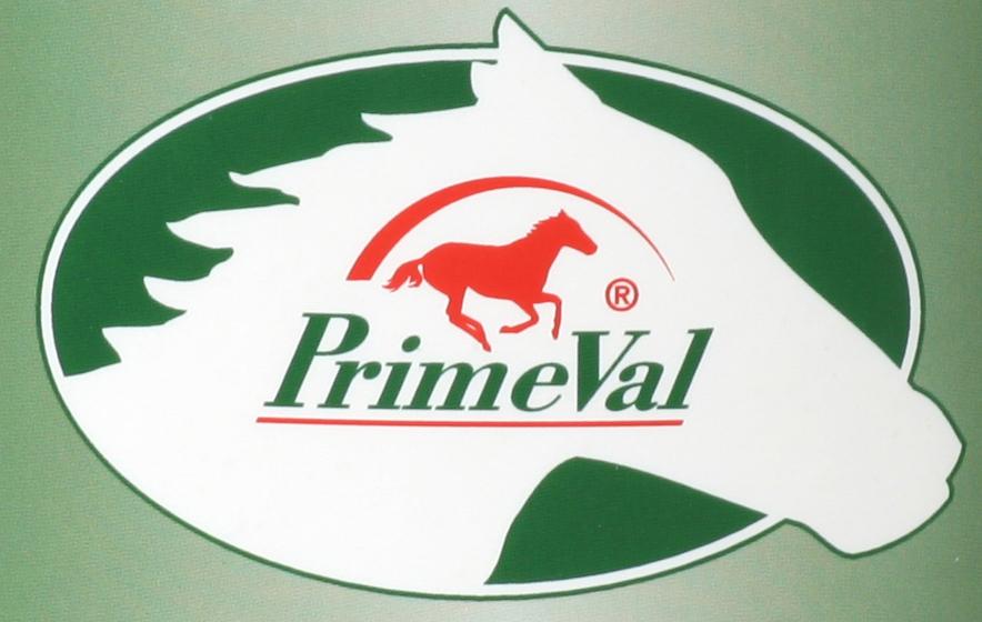 Logo PrimeVal